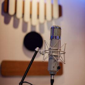 Chandler-REDD-tube-microphone
